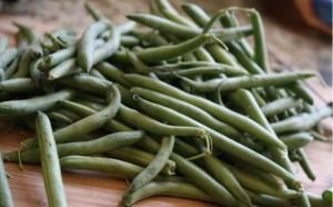 kate_horney_green_beans