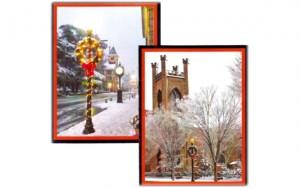 New Bern Snow Cards