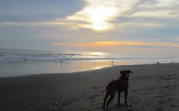 Atlantic Beach NC