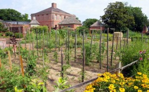 Tryon Palace Kitchen Garden