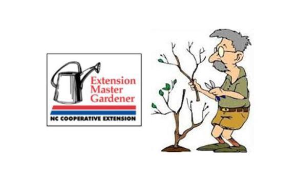 Free Horticultural Workshop Program