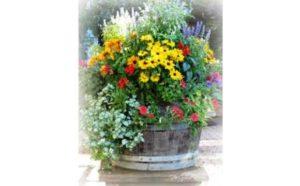April Workshop by Master Gardeners