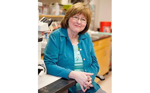 Dr Carol Colton