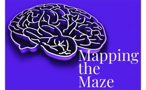 Mapping the Maze