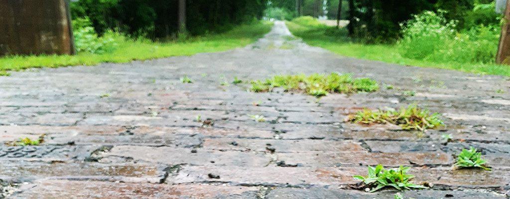Follow the Brick Road