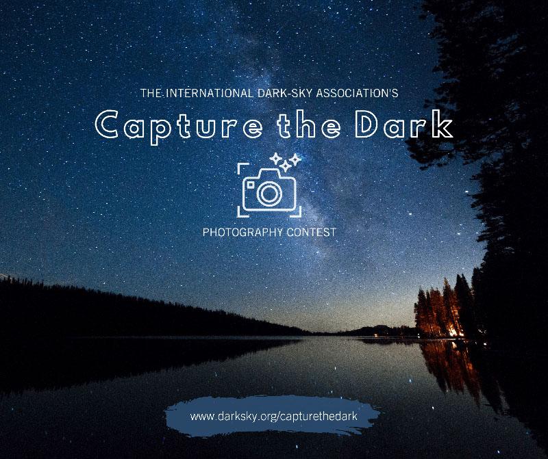 Capture the Dark by Lauren Scorzafava'