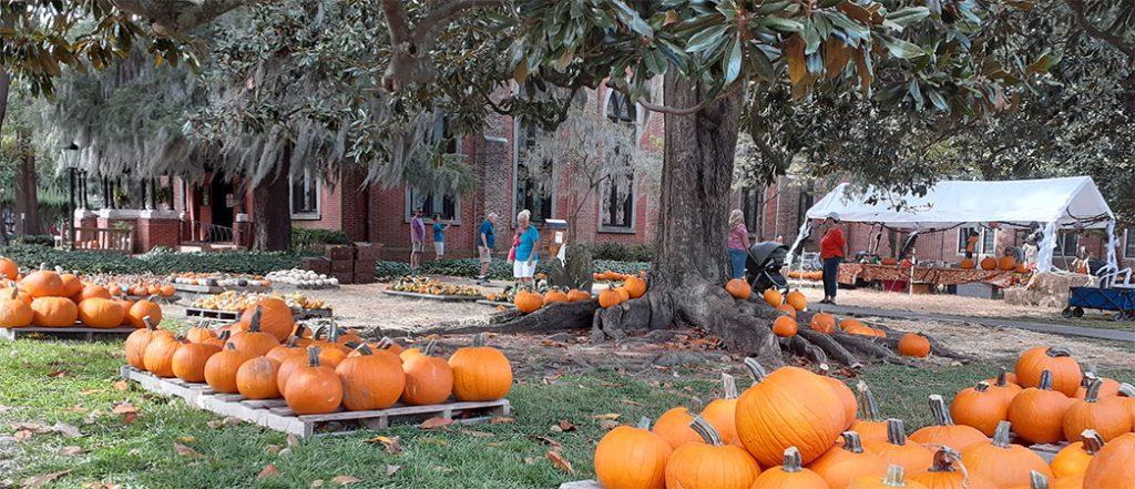 Christ Church's Pumpkin Patch
