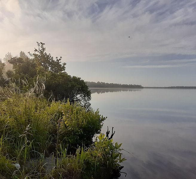 Sunrise in Croatan National Forest - Catfish Lake
